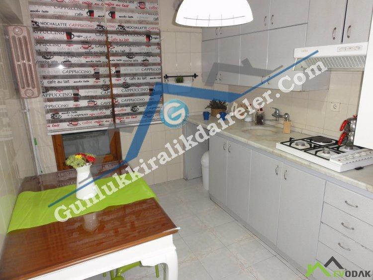 Evodak Apartments D-2